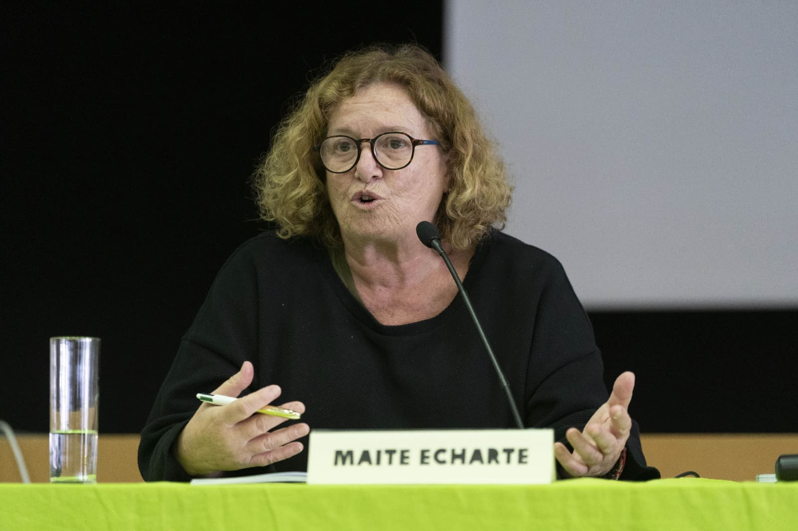 Maite Echarte, Asociación Prodein VIII Seminario De La Red ECG ©Guillermo Sanz para OXFAM Intermon